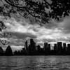 Black Skyline
