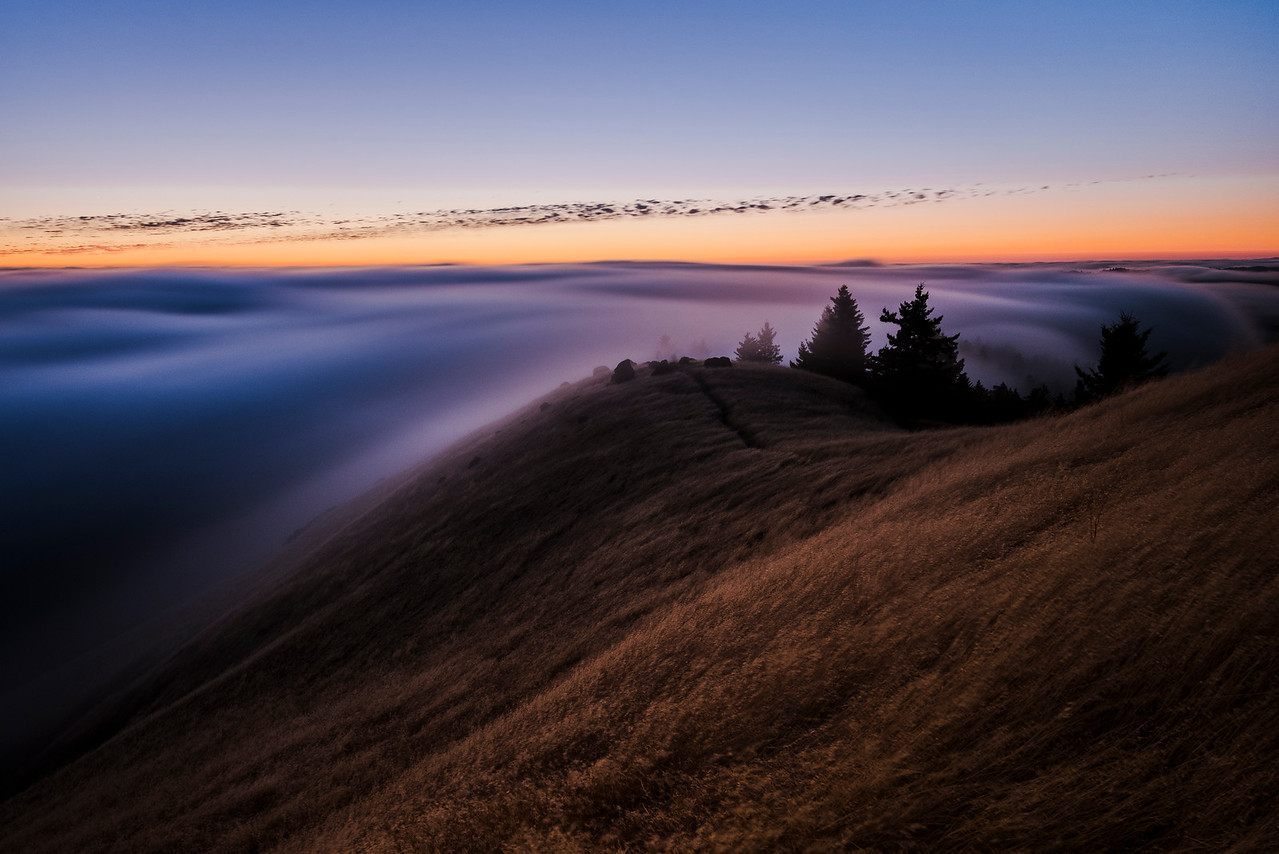 u n d u l a | marin county, california