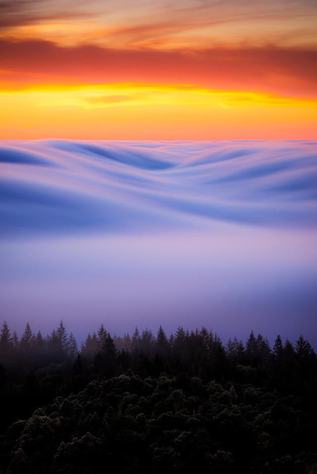 s m o o v e | marin county, california