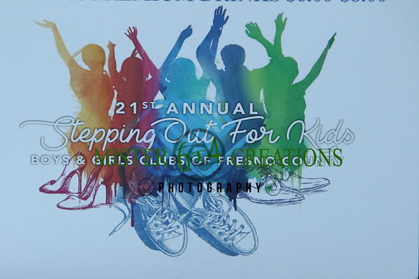 2017 - Stepping Out for Kids
