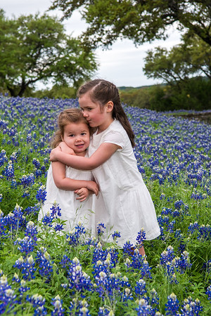 Select Blue Bonnet photos