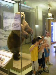 Sunday morning: Kevin, Zach, Megan and I hit the Natural History Museum downtown.