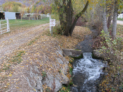 The creek is the boundary for about half of their three-acre farm.