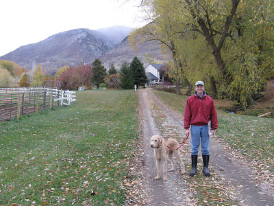 Long driveway leading to Fruitland Farm.  That's Sunny on the left.  He has trained Joel (on the right) to fetch the paper every morning. .. Note creek on the right.