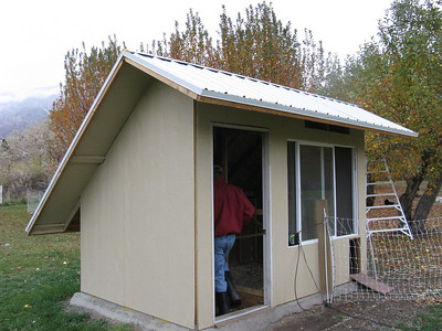 Joel and Debbie built the hen house. The fence for the pen is electrically charged - to keep Sunny and the fox out.