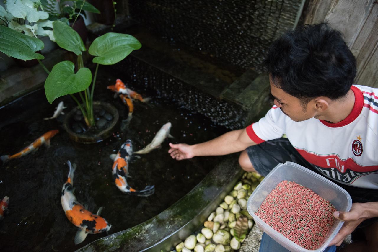 ImagesBySheila_2016-Bali_SRB3630
