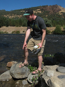 Brian discovers gold in the American River.