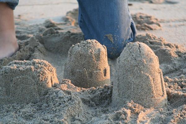 Andrew Beach Rose Orig Sept 06