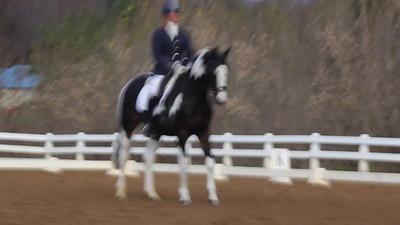 VIDEO-2012-11-04-LEA-SPORT-VHT-DRESS-1218