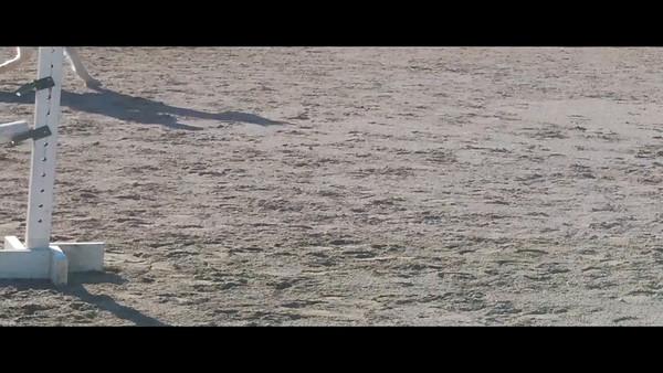 VIDEO-2012-SW-SPORT-JUMP-6