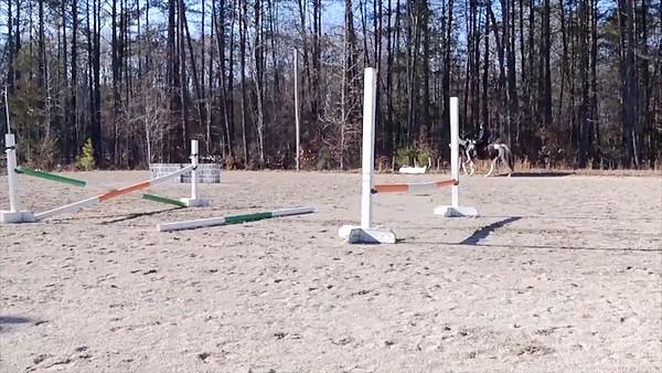 VIDEO-2012-SW-SPORT-JUMP-3