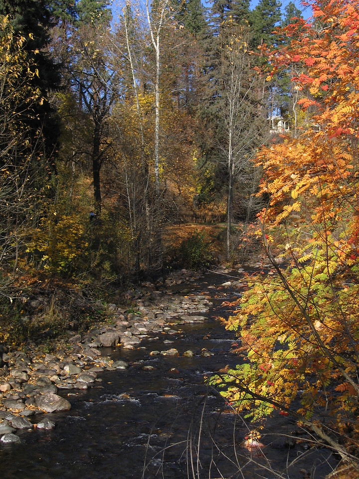 Colors along Rattlesnake Creek at the foot bridge.