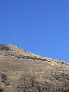 Paraglider floating over Mt Jumbo.