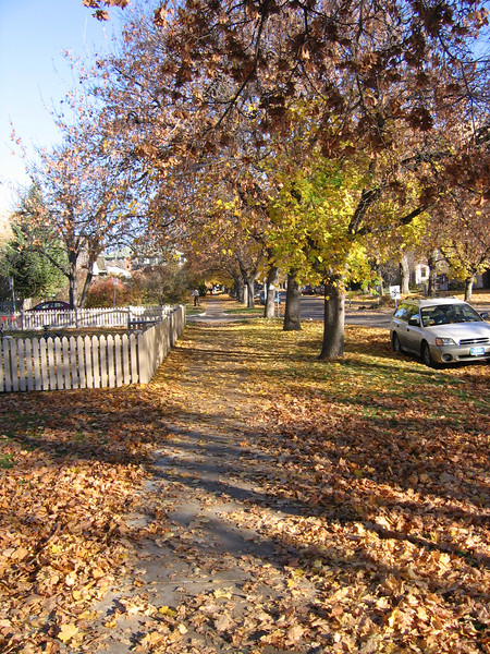 There is nothing like walking through the leaf covered sidewalks of the University nieghborhood in Missoula. Playing in the fall leaves is a joy in growing up that everyone should have.