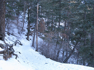 The lower 2/3s of the trail is north-facing and quite shaded - so snow persists.