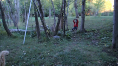 Video here - Joel's backyard zipline. .. Later he hopes to have one strong enough for adults.