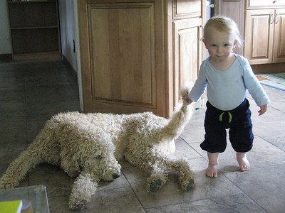 Did I mention that Sunny is very tolerant of little people!