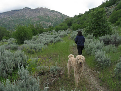 I'm tagging along for part of Debbie's run.