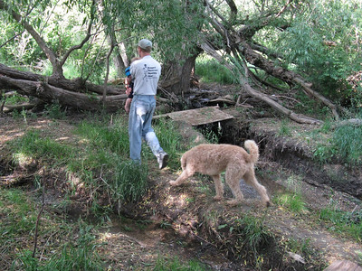 Joel heads the local Trails Committee, and this is part of a to-be new trail.
