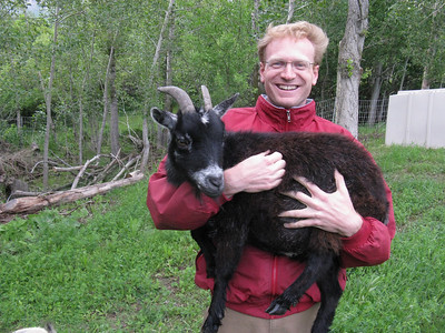 "The pygmy goats are sisters - and they earn their keep by devouring the abundant ""weeds."""