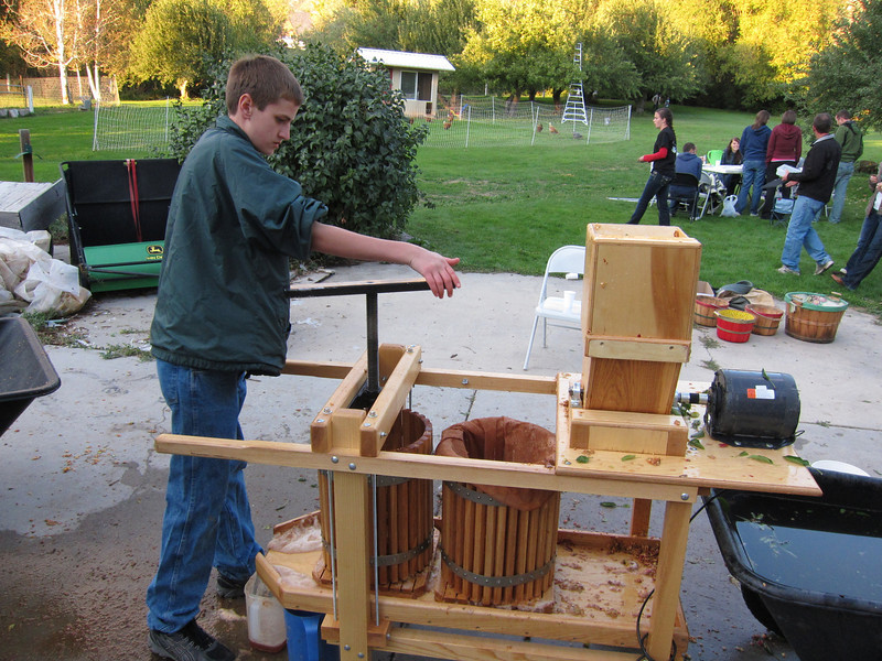 A few more apples being pressed into cider.
