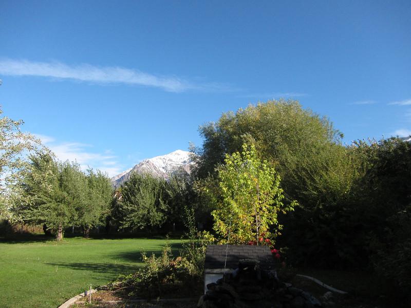 Ben Lomond Peak with major fresh snow - so I won't be climbing it tomorrow. :(