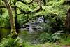 Day 4  Lake Ullswater to Shap Abbey