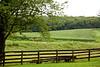 Hanover Farms and Ranch, July 2010