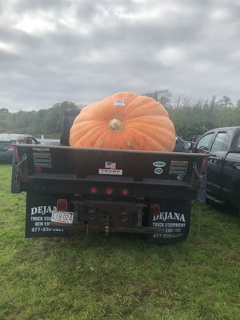 1503 pound pumpkin of Ed Pappas, Frerich farms weigh off 2018