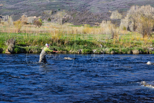 Tift Fly Fishing Middle Provo River May 3, 2019