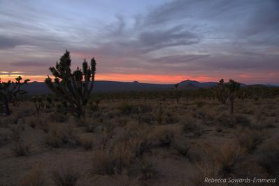 Desert sunsets are so stunning