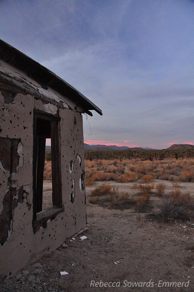 There were some old homestead ruins near the corral.