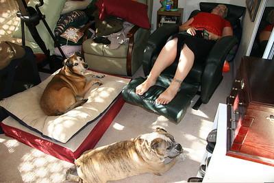 2006-07-11_08-35-39_foss