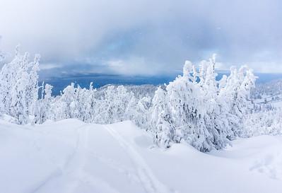 2015 Christmas at Tahoe