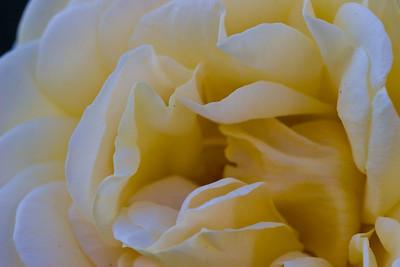 2008-07-02_17-47-08_foss
