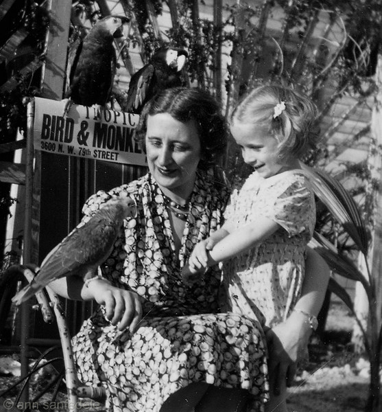 My mother and me, at the Parrot Jungle  in Florida -  photo is in  a dated booklet from a photo processor in Miami. This was a photo taken by the official pro at the site.