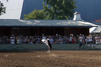 2006-08-20_17-02-58_foss