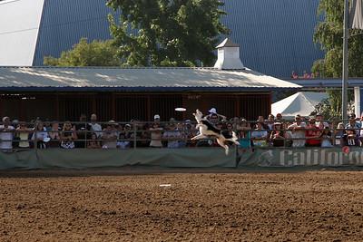 2006-08-20_17-11-35_foss