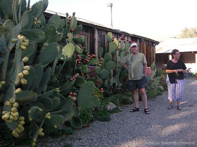 Rick and Corliss by the prickly pear at Alma Rosa