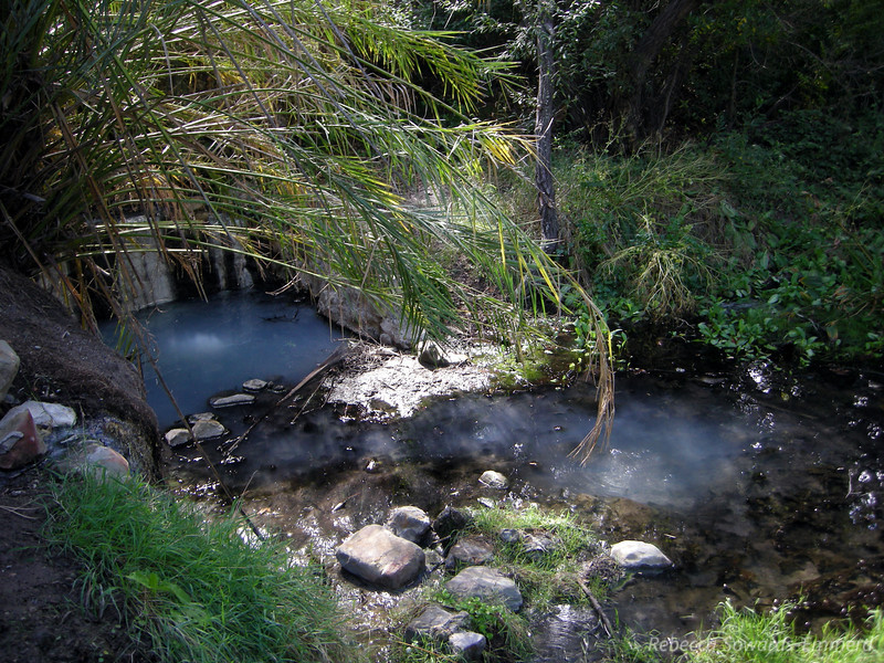 Las Cruces Hot Spring - lower pools
