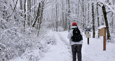 Cougar Mountain Hike -- on March 30!