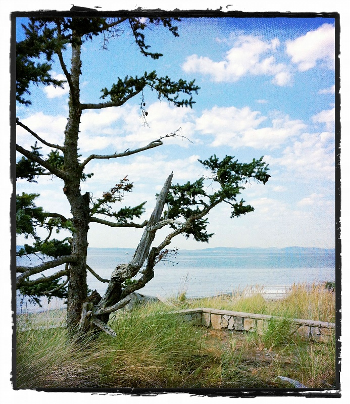 Whidbey Island with the Kolks