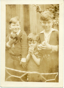 1938, May: Jimmy Brennan, Gerard Frost, and George Francis Frost, raising their own chickens.