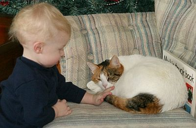 John petting one of our cats, this is Callie, the youngest of the two. Actually, John is the youngest - she's the youngest cat.