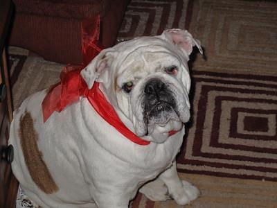 2008-12-25_18-40-57_foss