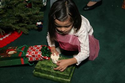2006-12-22_20-49-24_foss