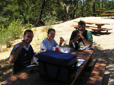 We picked up some great sandwiches at the Oakville Grocery. At Rutherford we had a picnic in the olive groves. Mmmm!