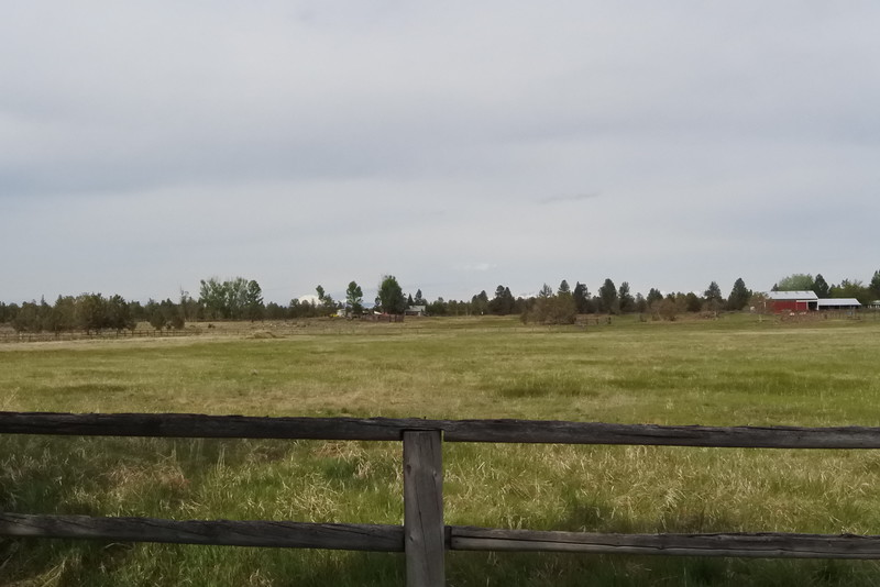 This is the pasture to the west - 10 acres and a mountain view.