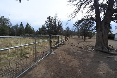 The north side of the property - BLM land to the left of the fence for miles and miles and miles!