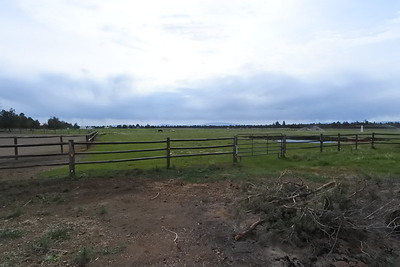 View from behind the garden area to the pasture.
